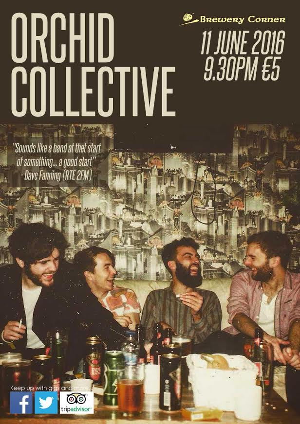 Orchid Collective - Live at Brewery Corner